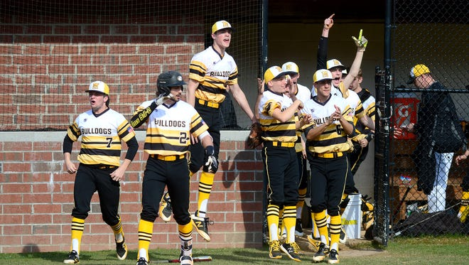 Murphy players leave the dugout to celebrate a homerun during their game at Rosman High School on Friday, March 16, 2018. The Bulldogs defeated the Tigers 18-3.