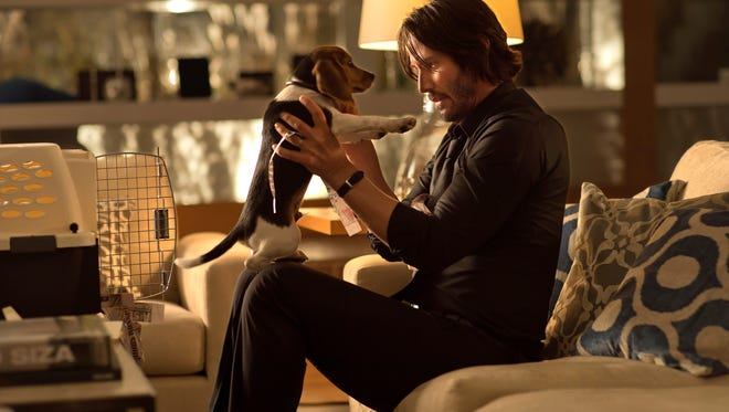 """Keanu Reeves as the title character bonds with his beagle Daisy (played by Andy)  in a scene from """"John Wick."""""""