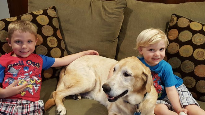 Luke McCleary, 5, and Colin McCleary, 2, are happy to have 12-year old Biscuit back home.