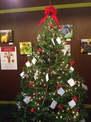 Fund for Women is sponsoring gift-giving trees at area