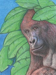 """Lois Chazen's """"Harambe & Friends: A Heart and Soul Musical Project"""" will be released during a show at Isis Music Hall in Asheville on Sunday, Nov. 19."""