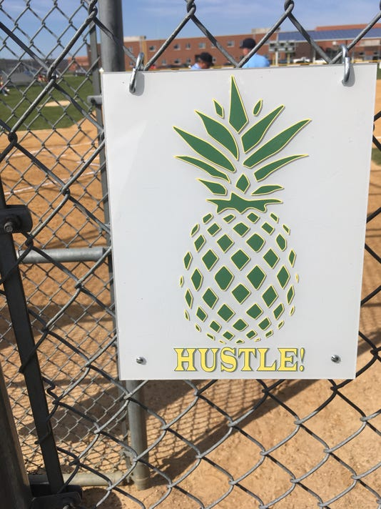 636331702696170589-Montgomery-pineapple-dugout-sign-2017-2-.JPG