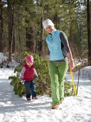 Every Kid in a Park program gave away around 1,300 Christmas Tree permits last year. Fourth-graders can obtain one by registering to get a free pass.