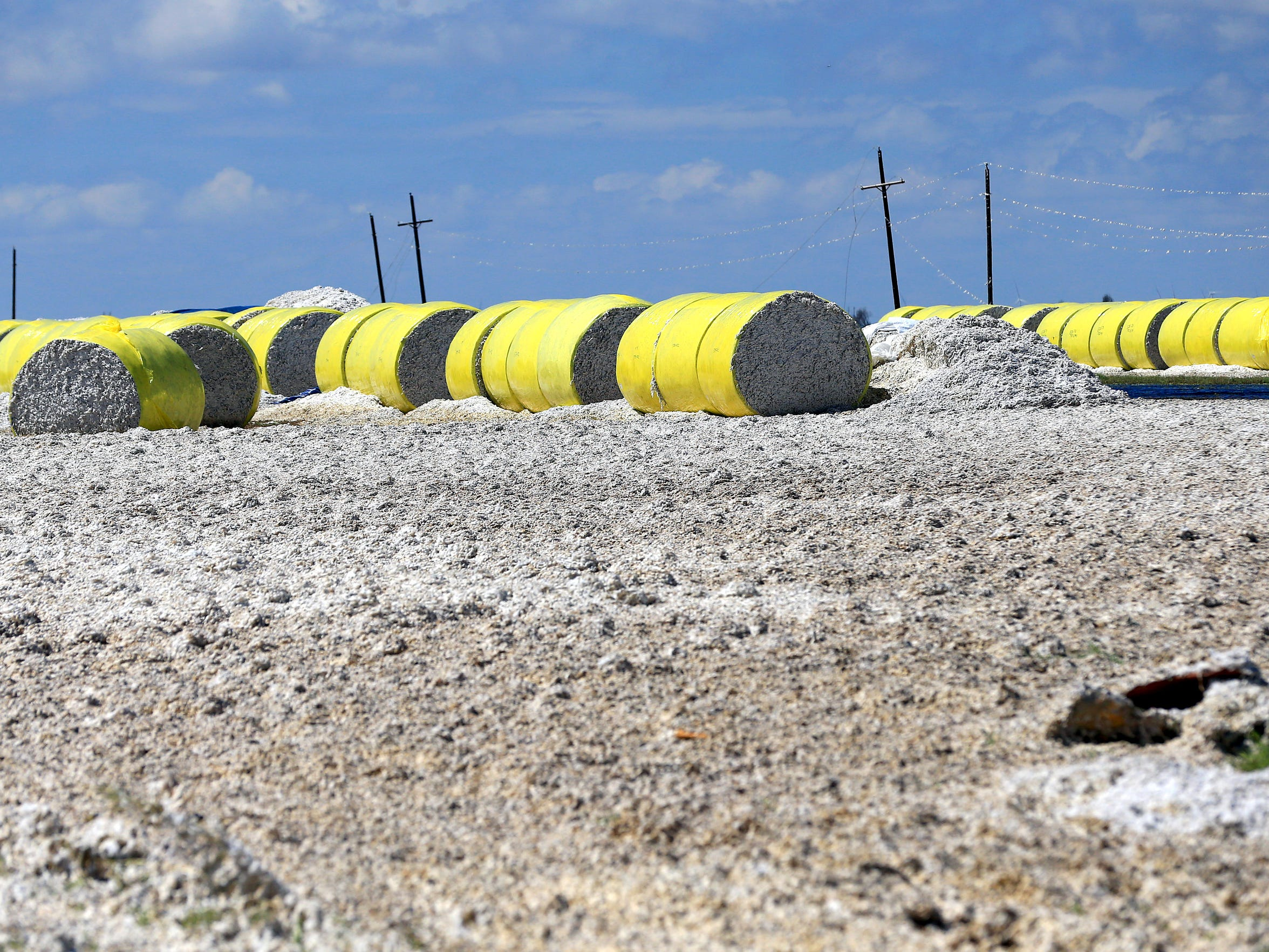 Cotton covers the land after Hurricane Harvey damaged several cotton bales Tuesday, Aug. 29, 2017, on Farm-to-Market Road 629 near Bayside, Texas. Harvey struck the Texas Coastal Bend as a Category 4 Friday, August 25, 2017.