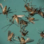 FDA approves test to screen blood donations for Zika virus