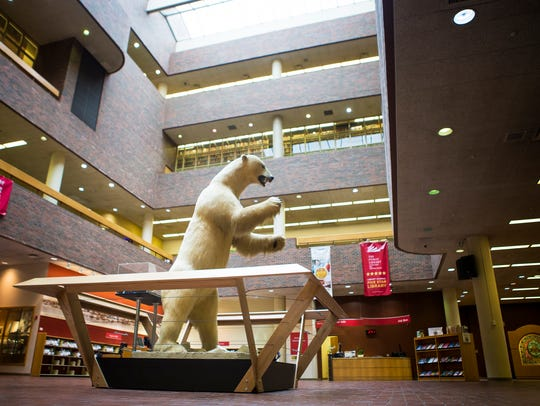 The polar bear stands at about 11 feet tall.