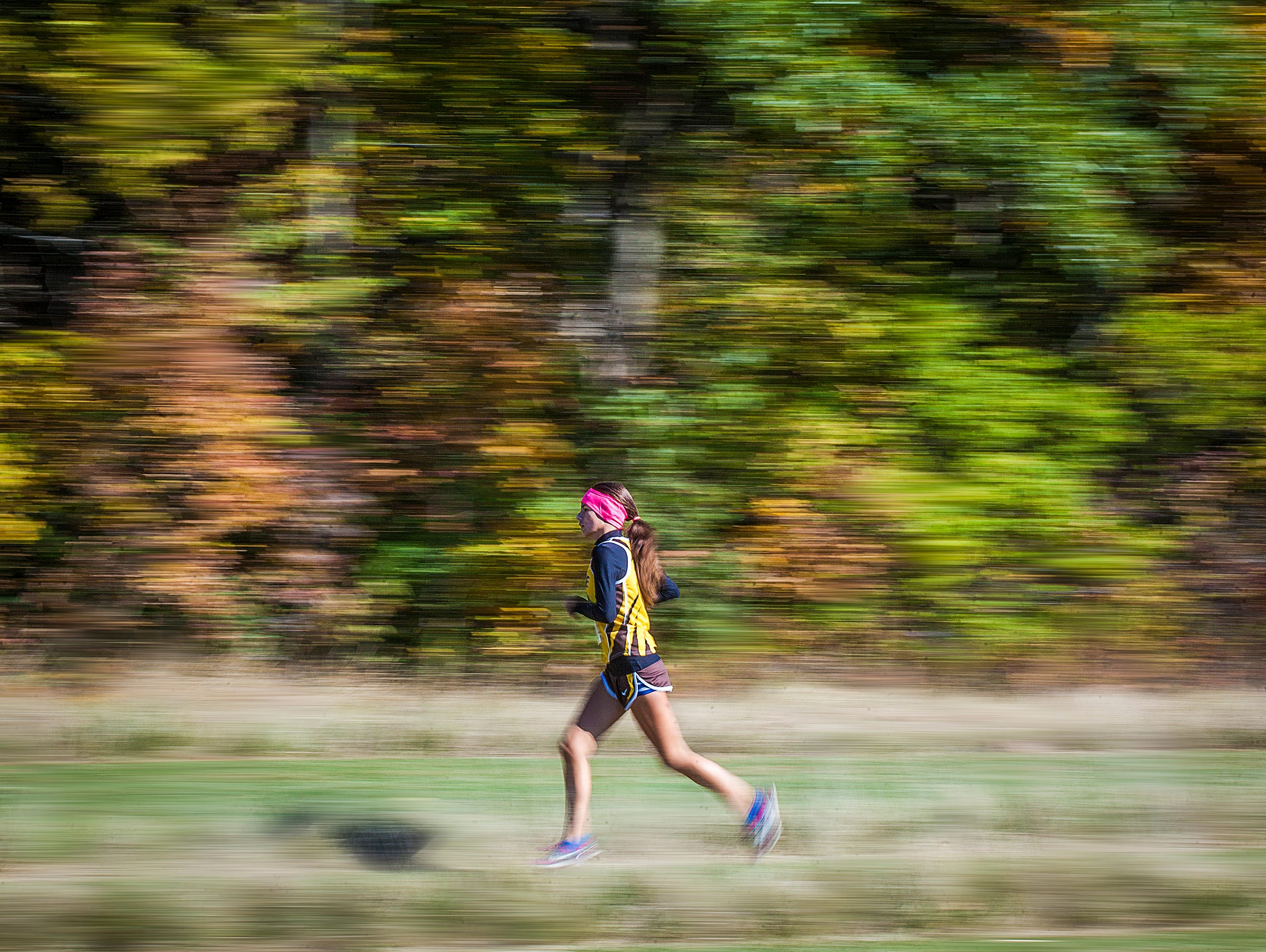 Monroe Central competes in the cross country sectional at the Sportsplex in Muncie on Saturday, Oct. 10, 2015.