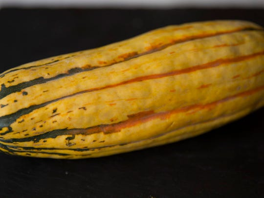 One of many winter squash varieties