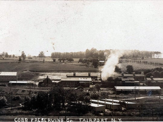 View looking south at the Cobb Preserving Co., circa