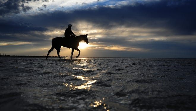 Ben Cadden rides Winx, a prize-winning race horse, in the shallow waters of Altona beach on Oct. 16, 2016 in Melbourne, Australia.