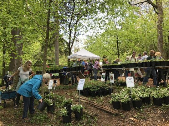Cranbrook House & Gardens Auxiliary is holding its annual plant sale on Tuesday and Wednesday.