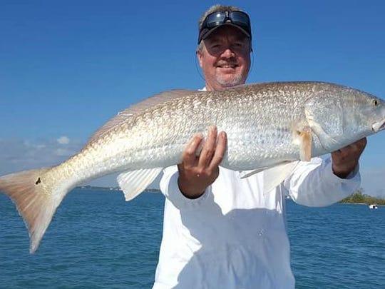 redfish coomber