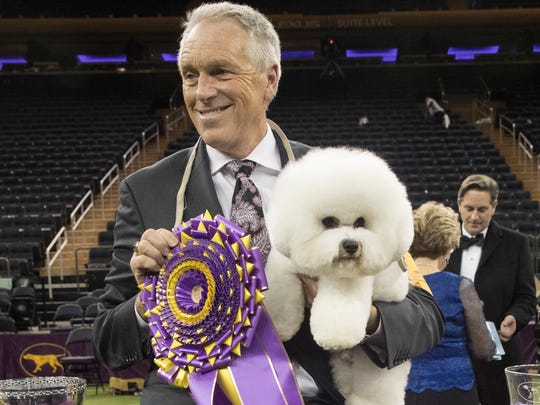 Handler Bill McFadden poses for photos with Flynn, after the bichon frise won best in show during the 142nd Westminster Kennel Club Dog Show, Tuesday.