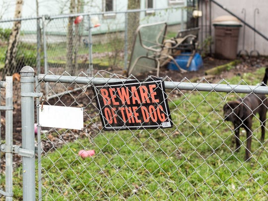 Beware of the Dog sign on the fence with a dog in the