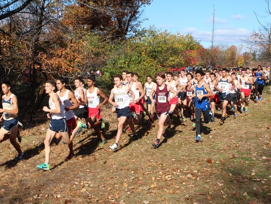 636420707940810446-State-XC-Sectionals-14591998.JPG