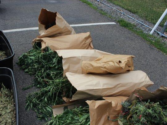Marijuana seized by police