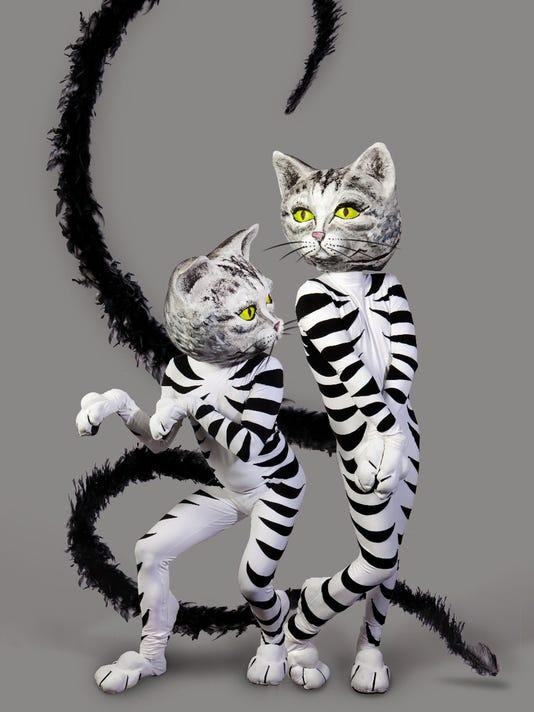 ZooZoo Cats 1