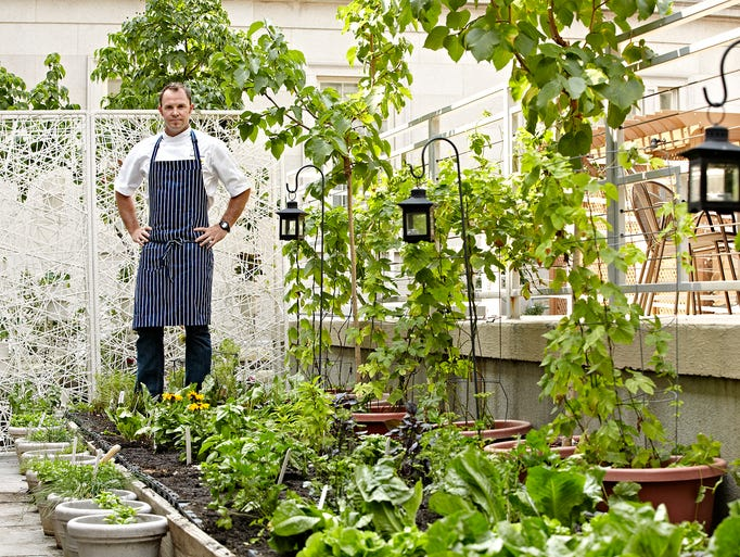 Chef Dennis Marron of Poste Moderne Brasserie and Bar in Washington, D.C. cultivates an array of fresh produce and herbs in Poste's courtyard garden.