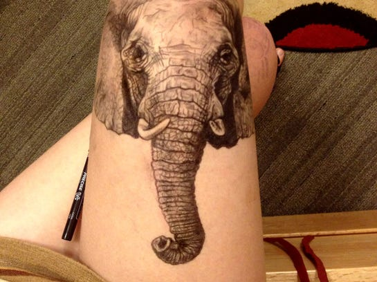 Elephant (Courtesy of Jody Steel)