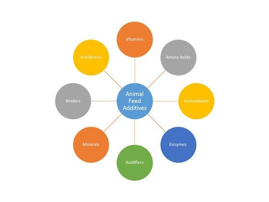 Animal-Feed-Additives-graph.jpg