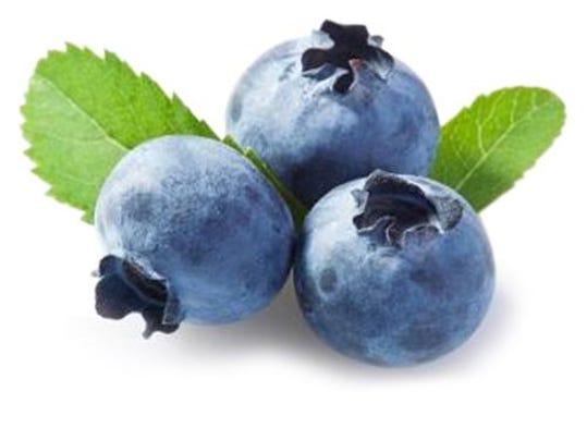 fd06-blueberries-0417n