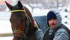 Aurelio looks as proud of Taxi as we were on the walkover before the race.