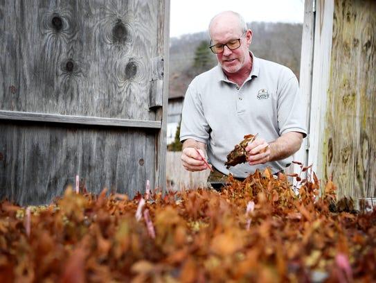 Bill Jones, president of Carolina Native Nursery in