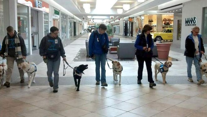Walking the Eastview Mall are Marci Frutkoff with Esme, Cyndi Marvin with Baltic, Michelle Capellupo with Elora, Jill Johnston with Jolee, Sandra Yaskow with Epic and Jim DePuy with Neil.