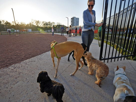 Apartment developers are realizing dogs are good for business