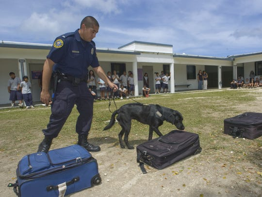 In this March 2008 file photo, Guam Customs and Quarantine Officer Mark Garcia and drug detector dog Toya demonstrate how they detect drugs hidden in luggage at Jose Rios Middle School.