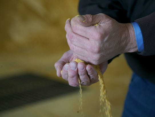 Daron Wilson, general manager of the Poet ethanol production facility, runs a pile of dried distillers grains through his fingers at the plant in Emmetsburg, Iowa.