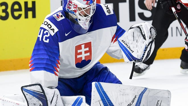 Slovakia's goalie Patrik Rybar signed a one-year entry-level deal with the Red Wings.