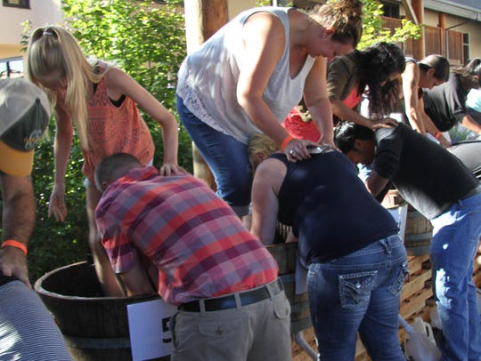 28th Annual Oregon Grape Stomp Championship & Harvest Celebration:Wine tasting, live music, lawn games and non-stop grape stomping action, 11 a.m. to 6 p.m. Sept. 22-23,Willamette Valley Vineyards, 8800 Enchanted Way SE, Turner. Admission $15, additional $10 fee per team to stomp. wvv.com.