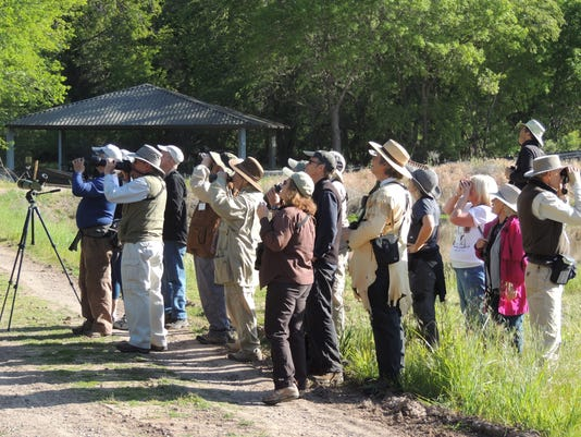 Verde Valley Birding and Nature Festival