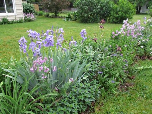636008094991774490-flowers-in-lavender-IJ-.jpeg