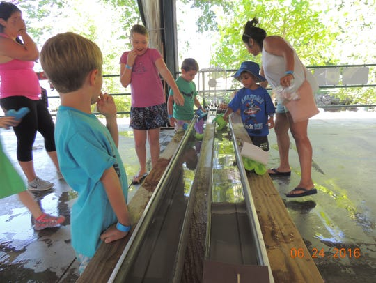 Children enjoy Celebrate Summer Day at the Mid-Hudson Children's Museum in Poughkeepsie in this file photo.