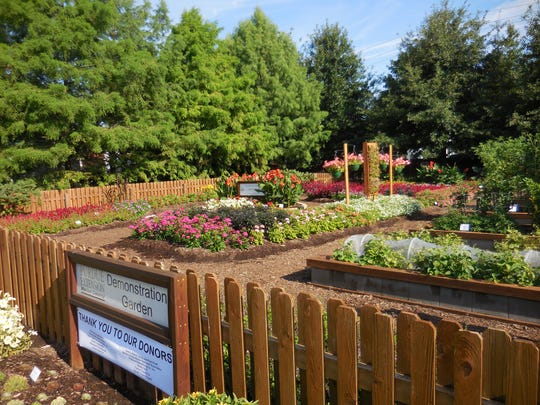 When at the state fair, visit the Purdue Extension Marion County Demonstration Garden to see hundreds of All-America Selections plants and how they would look in your landscape. The garden is near the DNR building on the northside of the Indiana State Fairgrounds.