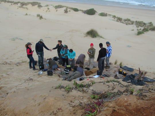 Jake Foubert and his team search the beach of Vleesbaai