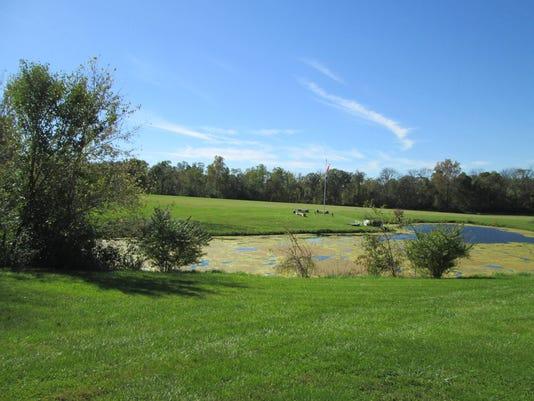 Union-County-park-2.JPG