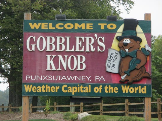 Since 1886, Punxsutawney Phil has predicted how much longer winter will last.
