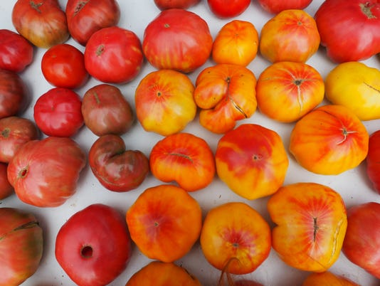636668985552405017-River-Bounty-Farm-Tomatoes.jpg