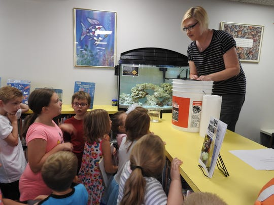 Several kids attended the adding of shrimps, crabs and snails to the new saltwater tank at the Coshocton Public Library on Wednesday.
