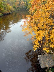 Colored trees line the Rock River in Mayville in this