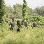 It's time for war in new 'The Walking Dead' photos