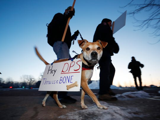 Ryan Marini and his dog Ollie walk a picket line outside