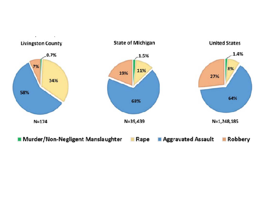 Graphs showcasing the number of violent crimes reported
