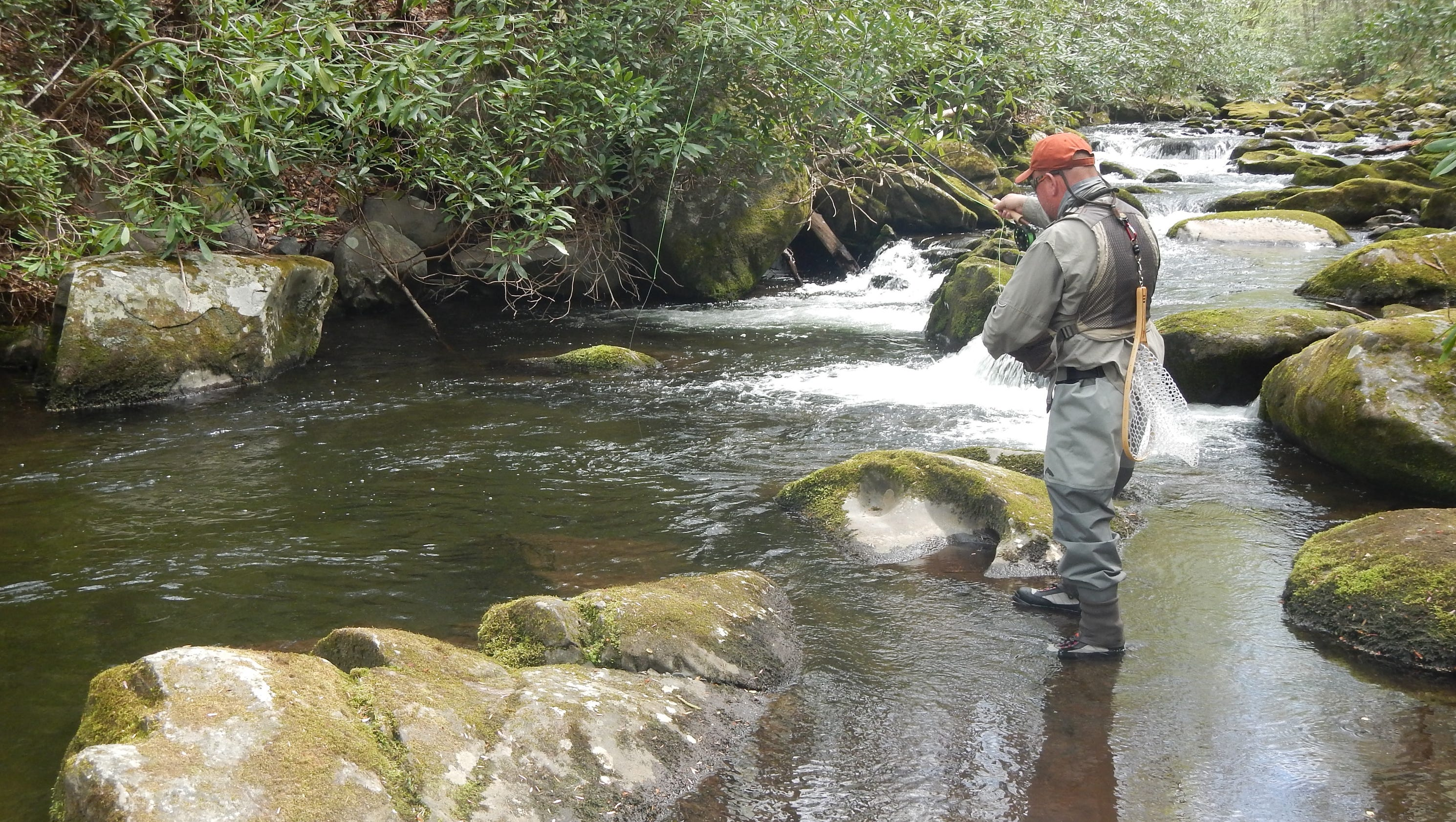 Fly fishing in Great Smoky Mountains National Park