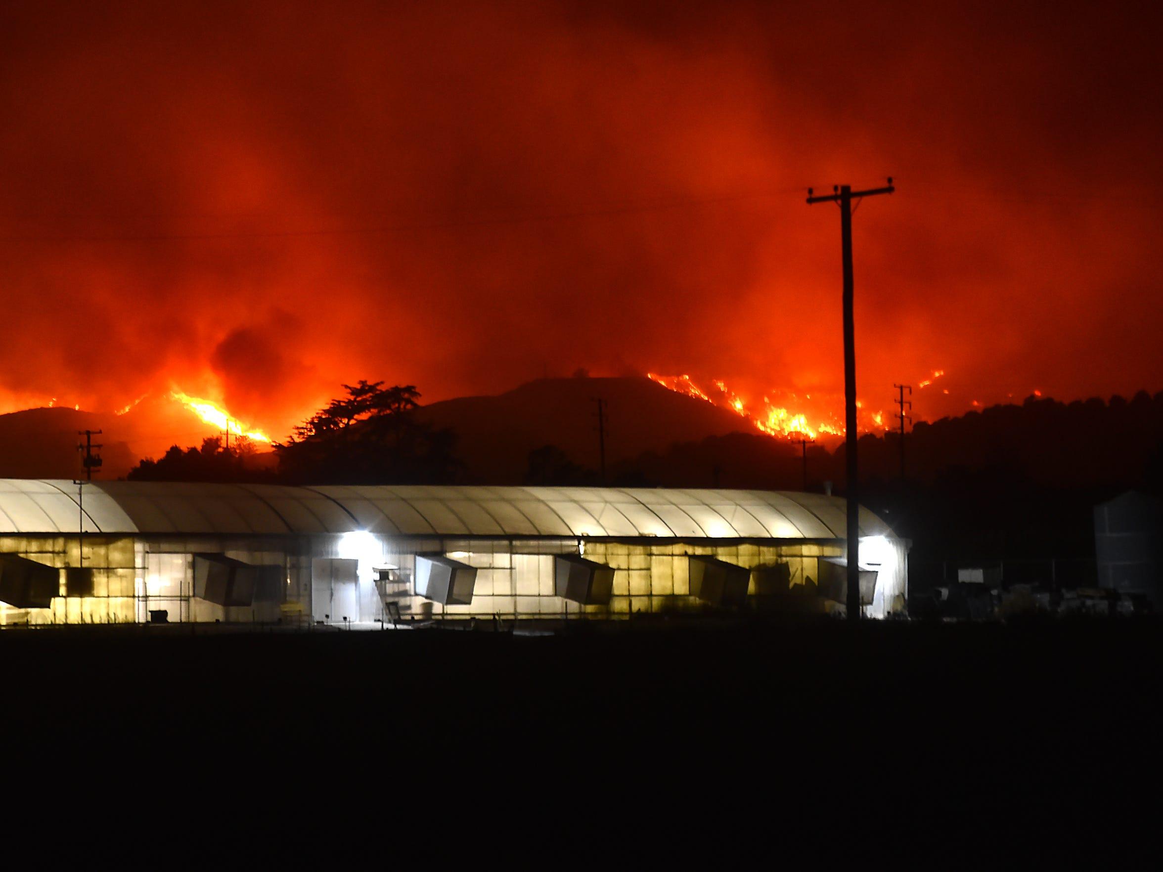 The Thomas Fire burns in the hills above Santa Paula on Dec. 4, 2017.