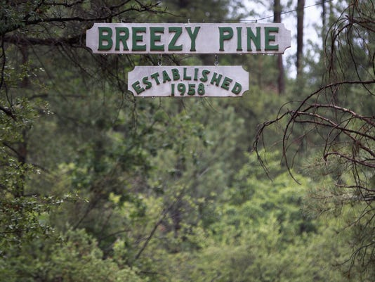 Breezy Pine