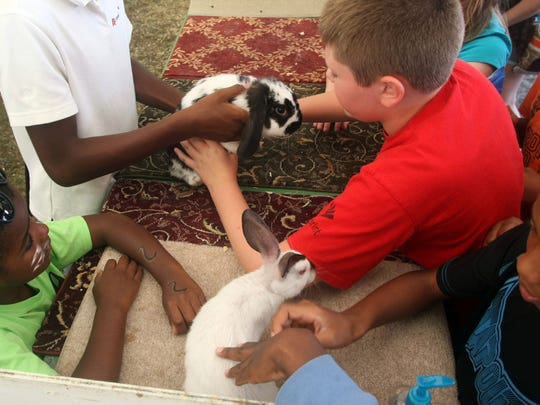 Children pet rabbits during day two of the Somerset County 4-H fair, Thursday, August 7, 2014, in Bridgewater, NJ. Photo by Jason Towlen